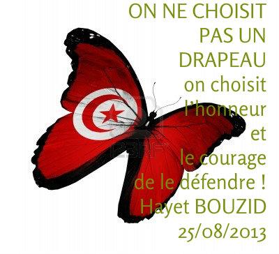 drapeau-tunisien-papillon-volant-isole-sur-fond-blanc