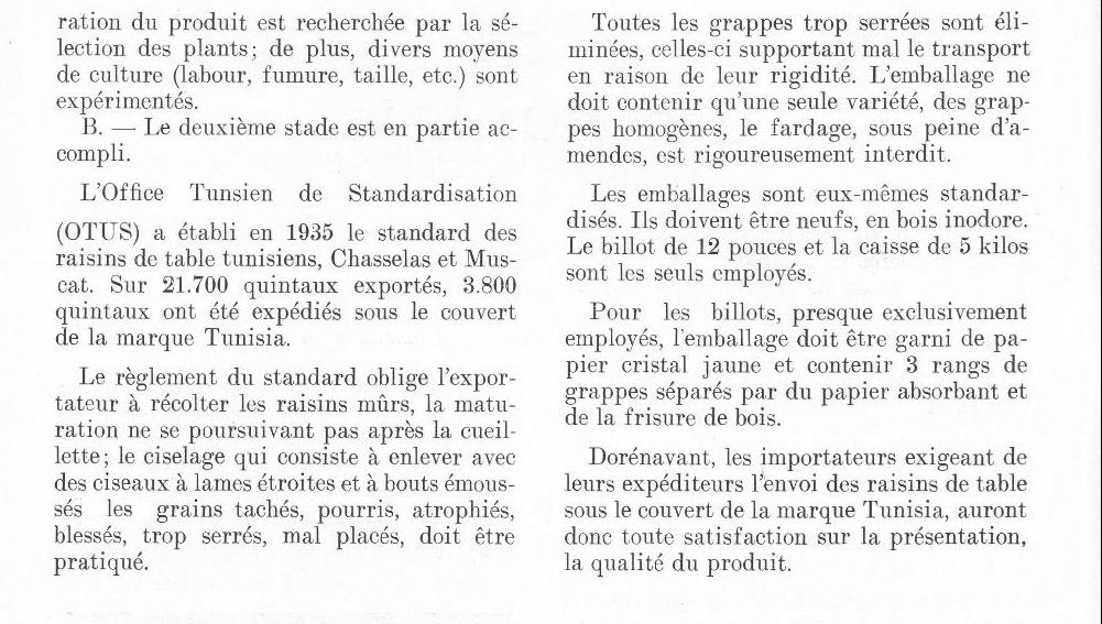La production du raisin en Tunisie  production-raisin-tn-2